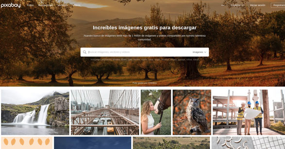 Textos de calidad  para webs - Agencia de Marketing Online